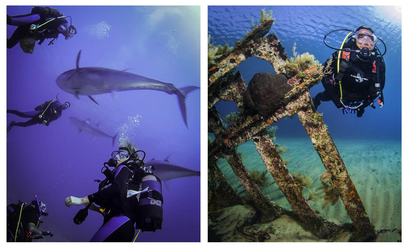 Serifos Scuba Divers - Σχολή κατάδυσης - Σέριφος