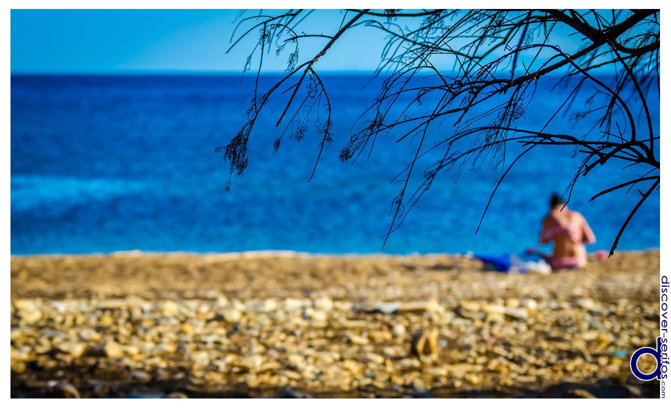 Σέριφος - Μαλλιάδικο - Παραλία