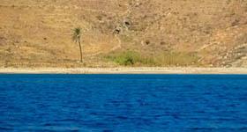 Παραλία Καλόγερος στη Σέριφο